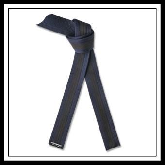 Belt System | Alwayzbcool's Blog |American Kenpo Belt Ranking